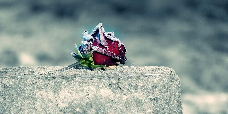Le décès à Saint-Prix