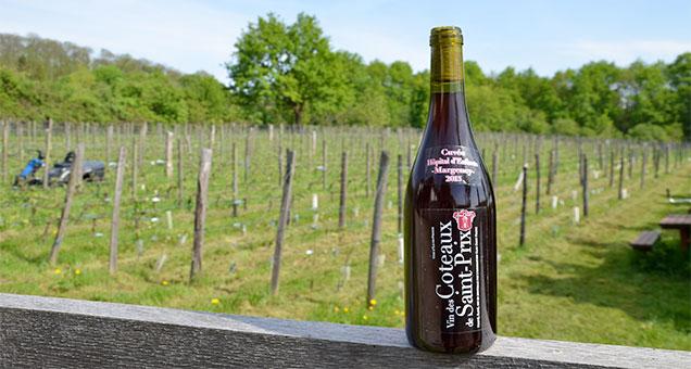 Le vin des coteaux de Saint-Prix